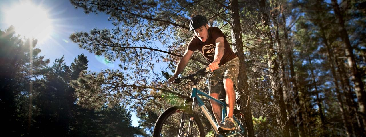 Cyclist in the forest (credit: ATEED / Chris McLennan)