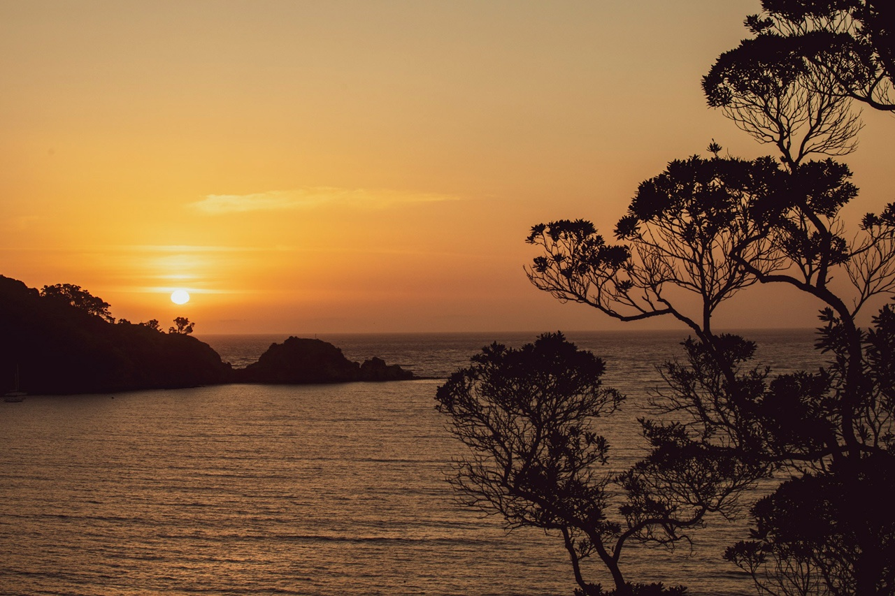 Photo of Canopy Camping Escapes - Fantail Stories, Great Barrier Island, Great Barrier Island