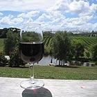 Photo of Fine Wine and Food Tours Auckland, Point Chevalier, Pt. Chevalier