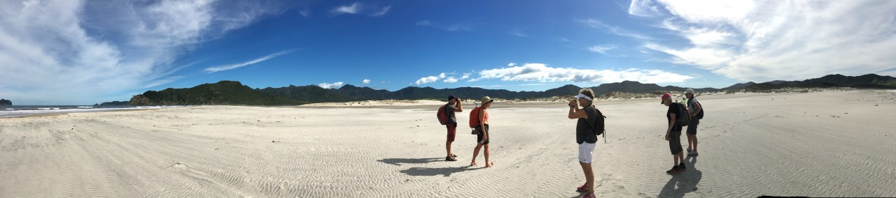 Photo of Walking By Nature - Great Barrier Island Eco Adventure for Women, Great Barrier Island, Glenfern Road