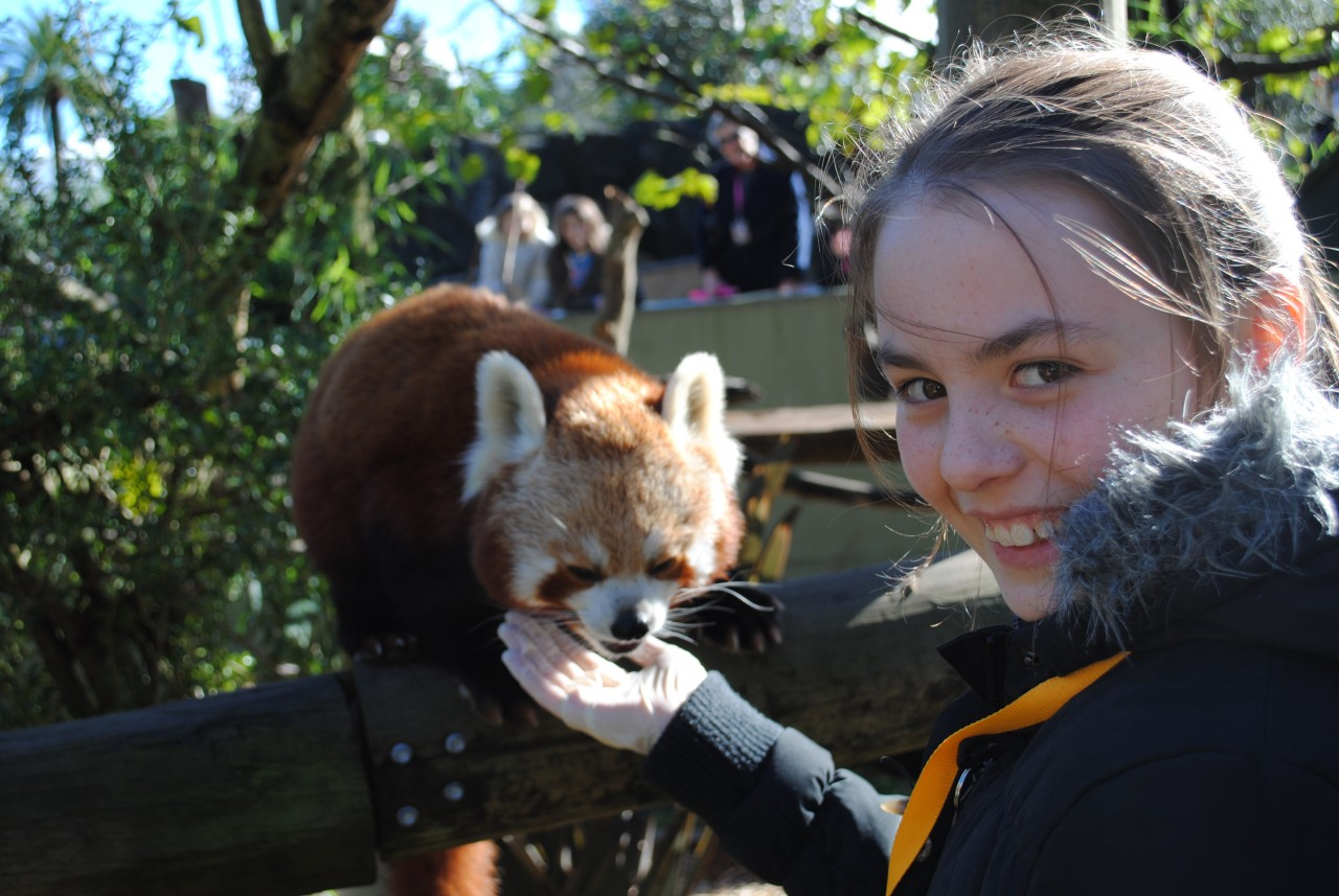 Photo of Auckland Zoo - Behind the scenes experiences, Western Springs