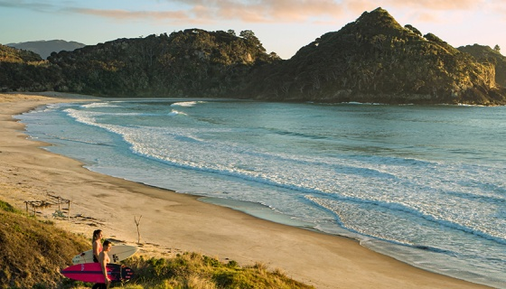 Great Barrier Island is a simpler world